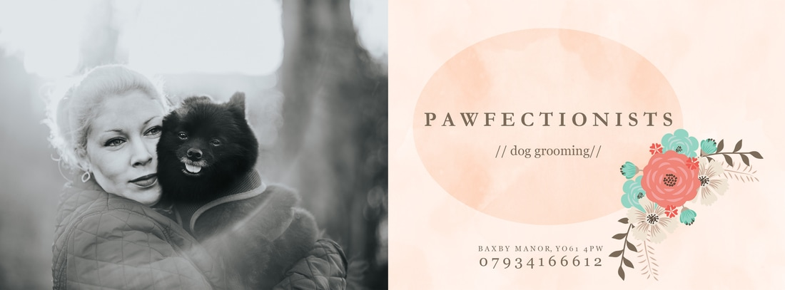 Dog Groomer Thirsk Easingwold Pawfectionists